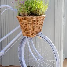 Велосипед - като акцент в двора