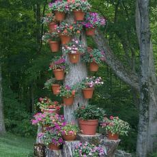 декорация от цветя върху дърво