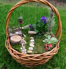Мини градина в кошница